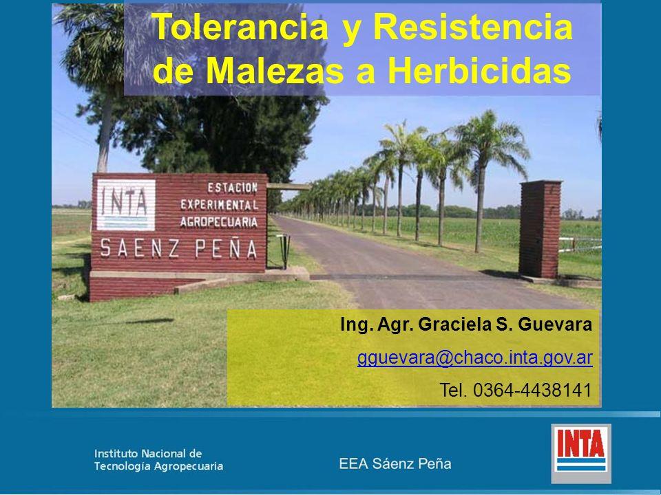 Tolerancia y Resistencia de Malezas a Herbicidas Ing. Agr. Graciela S. Guevara gguevara@chaco.inta.gov.ar Tel. 0364-4438141