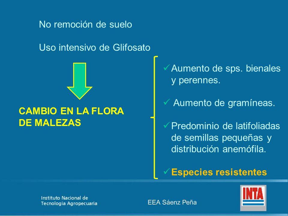 No remoción de suelo Uso intensivo de Glifosato CAMBIO EN LA FLORA DE MALEZAS Aumento de sps. bienales y perennes. Aumento de gramíneas. Predominio de