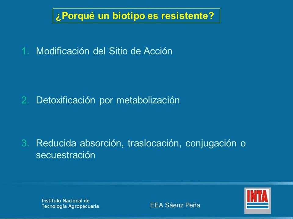 ¿Porqué un biotipo es resistente? 1.Modificación del Sitio de Acción 2.Detoxificación por metabolización 3.Reducida absorción, traslocación, conjugaci