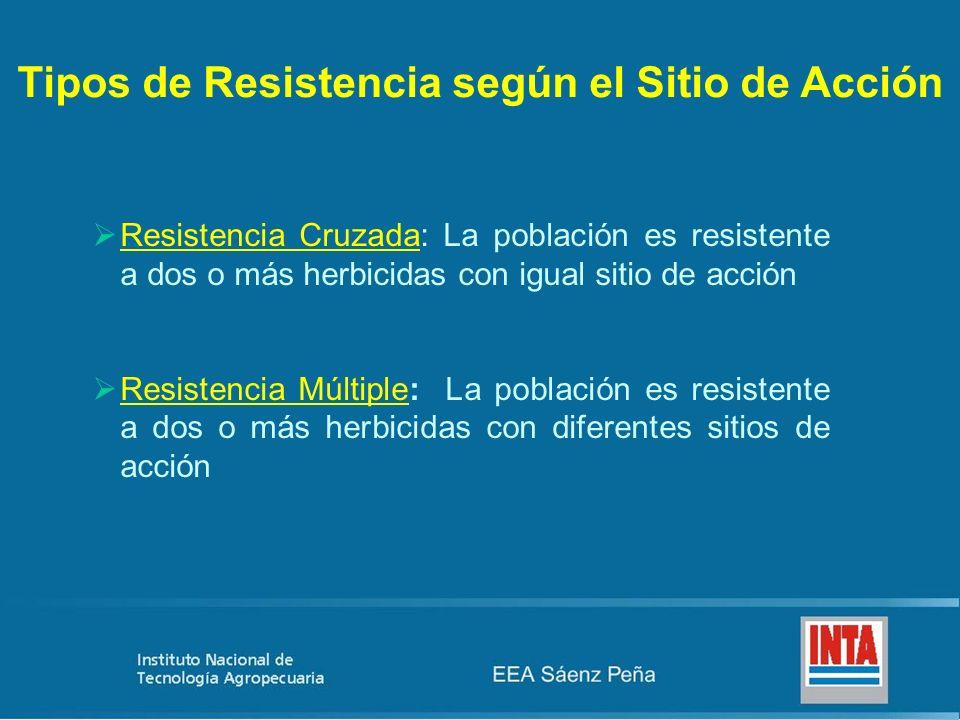Tipos de Resistencia según el Sitio de Acción Resistencia Cruzada: La población es resistente a dos o más herbicidas con igual sitio de acción Resiste