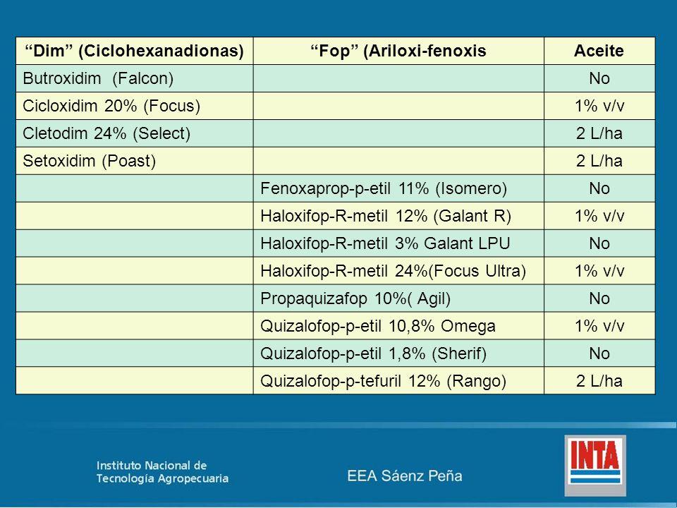 Dim (Ciclohexanadionas)Fop (Ariloxi-fenoxisAceite Butroxidim (Falcon)No Cicloxidim 20% (Focus)1% v/v Cletodim 24% (Select)2 L/ha Setoxidim (Poast)2 L/ha Fenoxaprop-p-etil 11% (Isomero)No Haloxifop-R-metil 12% (Galant R)1% v/v Haloxifop-R-metil 3% Galant LPUNo Haloxifop-R-metil 24%(Focus Ultra)1% v/v Propaquizafop 10%( Agil)No Quizalofop-p-etil 10,8% Omega1% v/v Quizalofop-p-etil 1,8% (Sherif)No Quizalofop-p-tefuril 12% (Rango)2 L/ha