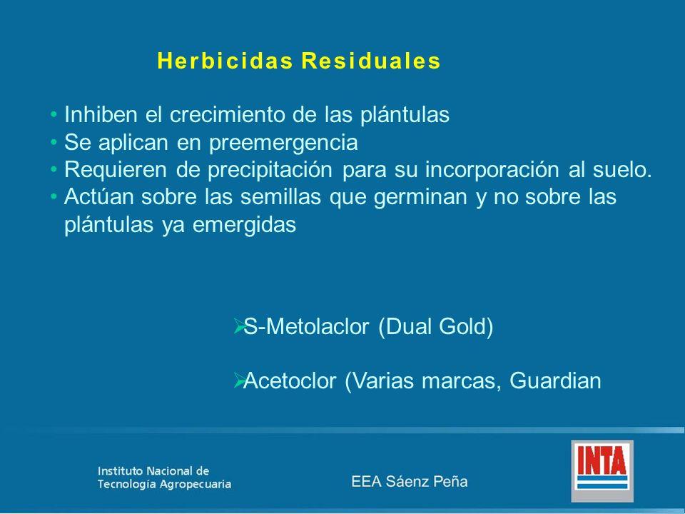Herbicidas Residuales Inhiben el crecimiento de las plántulas Se aplican en preemergencia Requieren de precipitación para su incorporación al suelo.