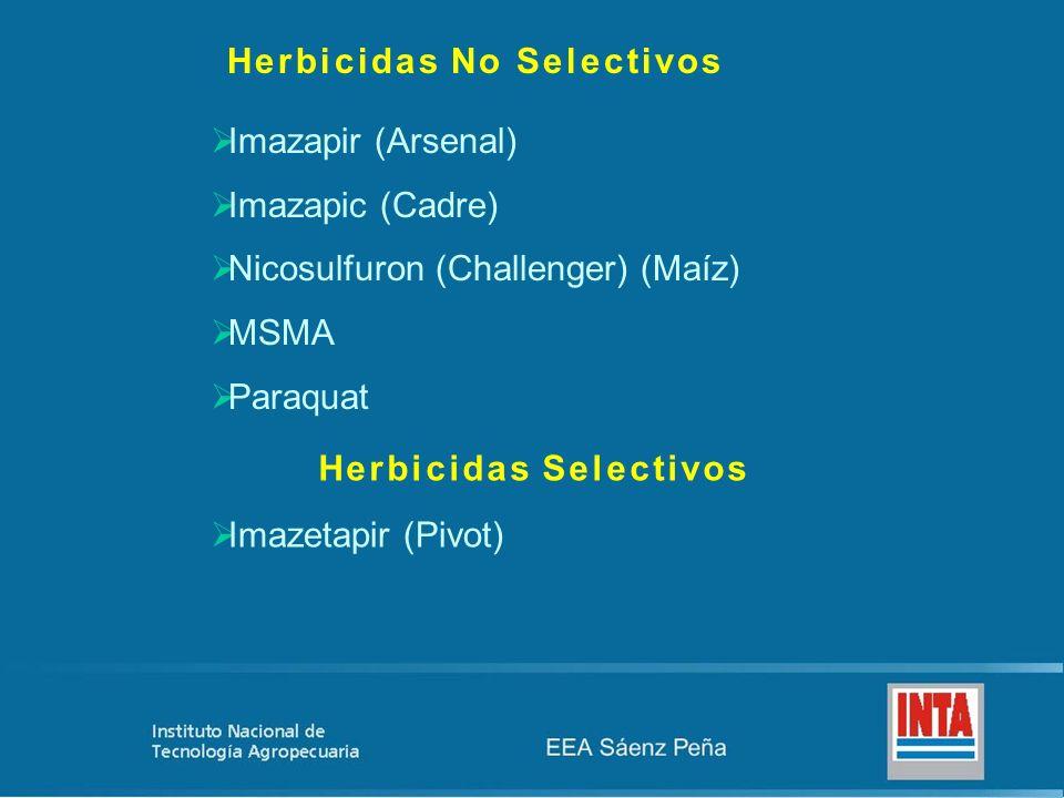 Herbicidas No Selectivos Imazapir (Arsenal) Imazapic (Cadre) Nicosulfuron (Challenger) (Maíz) MSMA Paraquat Herbicidas Selectivos Imazetapir (Pivot)