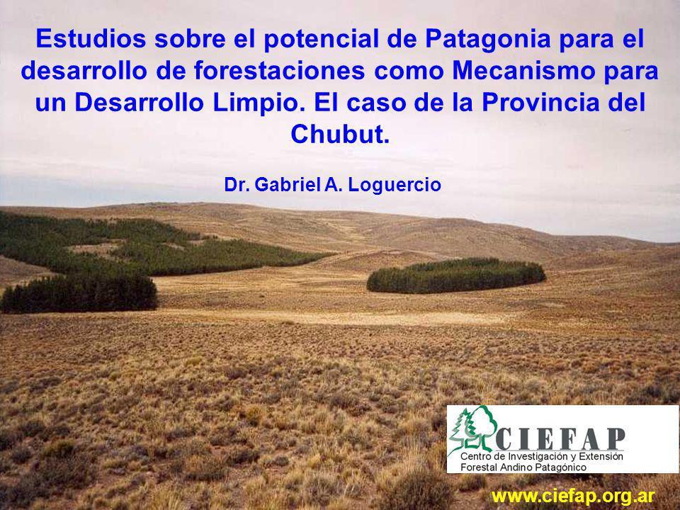 Estudios sobre el potencial de Patagonia para el desarrollo de forestaciones como Mecanismo para un Desarrollo Limpio.
