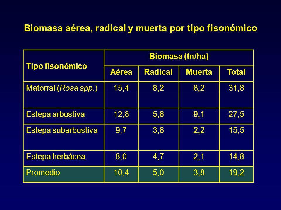 Tipo fisonómico Biomasa (tn/ha) AéreaRadicalMuertaTotal Matorral (Rosa spp.)15,48,2 31,8 Estepa arbustiva12,85,69,127,5 Estepa subarbustiva9,73,62,215,5 Estepa herbácea8,04,72,114,8 Promedio10,45,03,819,2 Biomasa aérea, radical y muerta por tipo fisonómico
