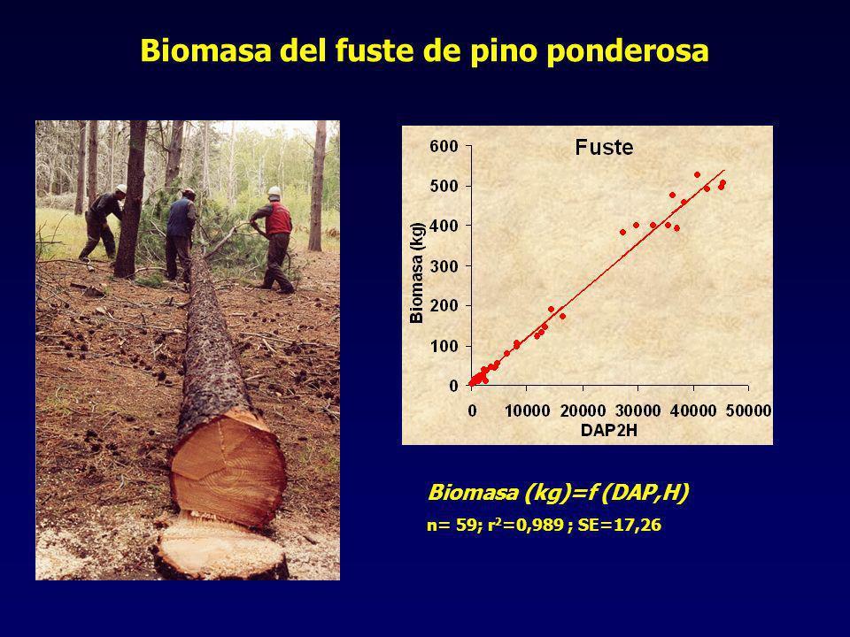 Biomasa del fuste de pino ponderosa Biomasa (kg)=f (DAP,H) n= 59; r 2 =0,989 ; SE=17,26