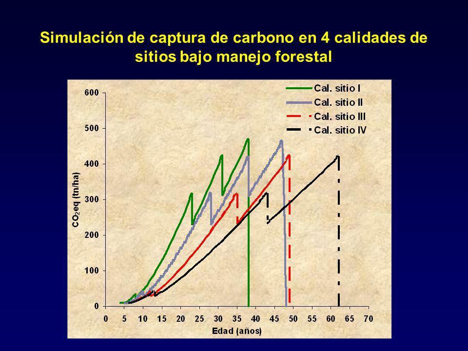 Simulación de captura de carbono en 4 calidades de sitios bajo manejo forestal