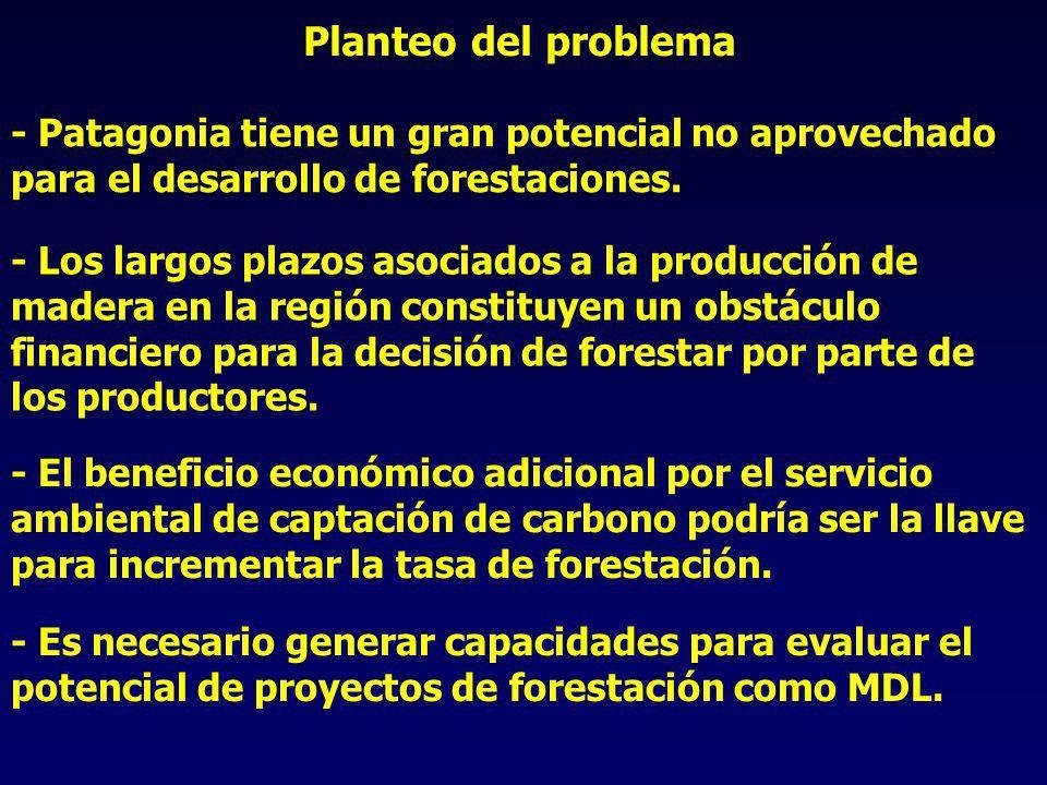 Planteo del problema - Los largos plazos asociados a la producción de madera en la región constituyen un obstáculo financiero para la decisión de forestar por parte de los productores.