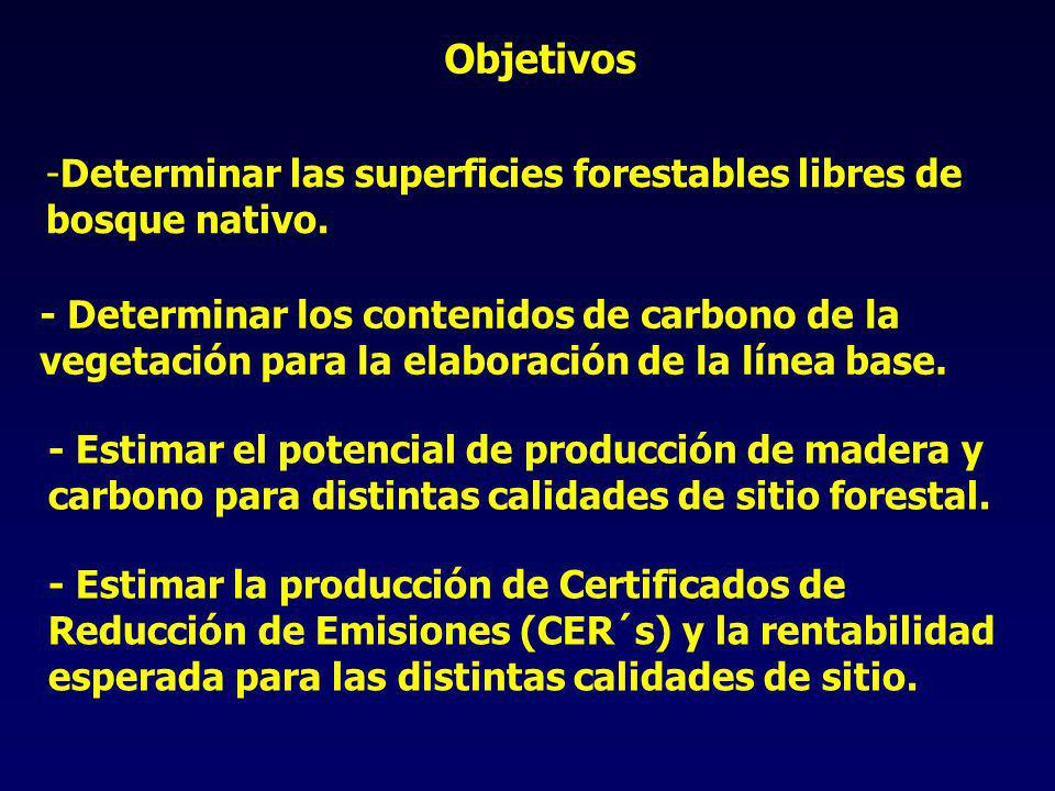 Objetivos -Determinar las superficies forestables libres de bosque nativo.
