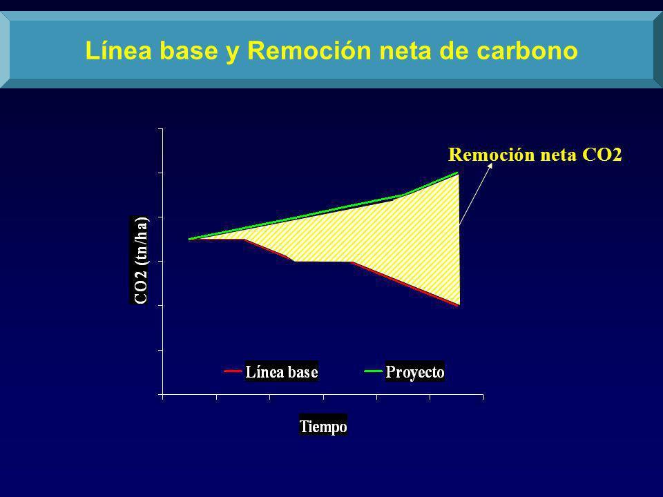 Remoción neta CO2 Línea base y Remoción neta de carbono
