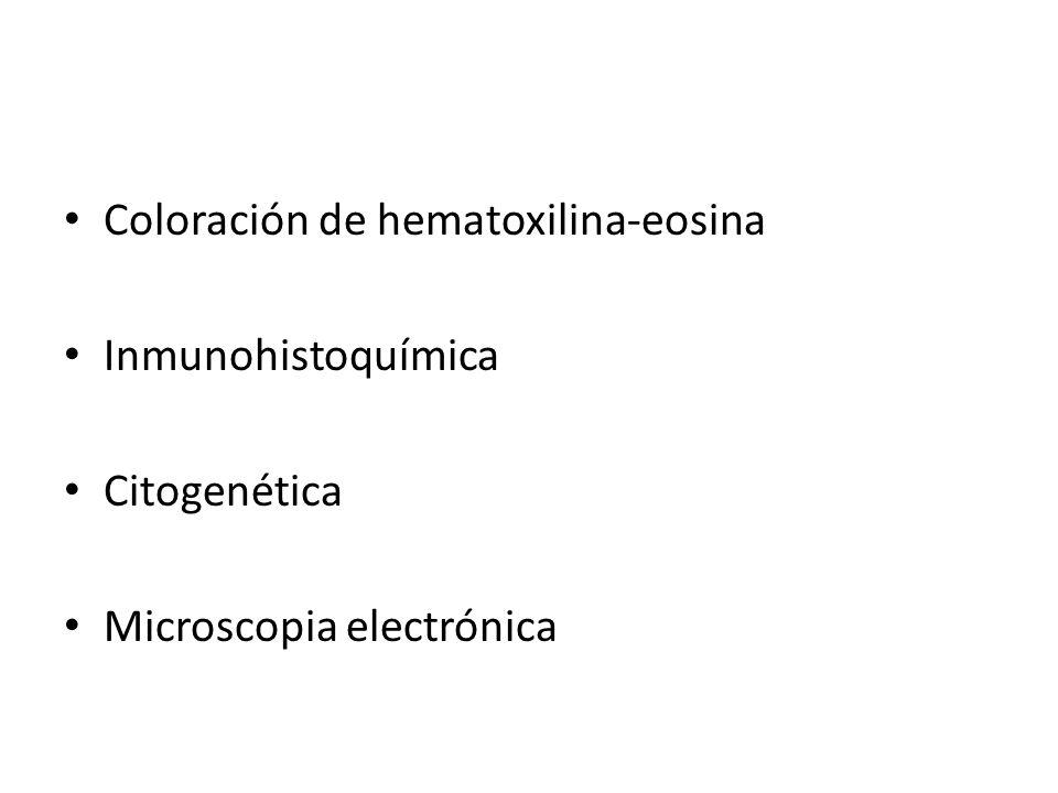 Coloración de hematoxilina-eosina Inmunohistoquímica Citogenética Microscopia electrónica