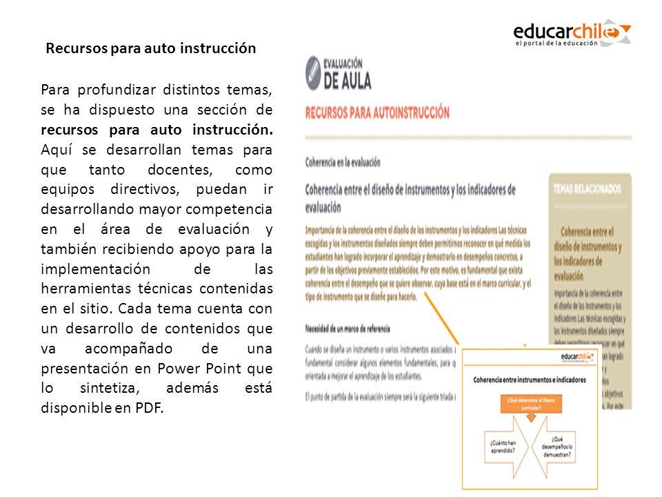 Para profundizar distintos temas, se ha dispuesto una sección de recursos para auto instrucción. Aquí se desarrollan temas para que tanto docentes, co