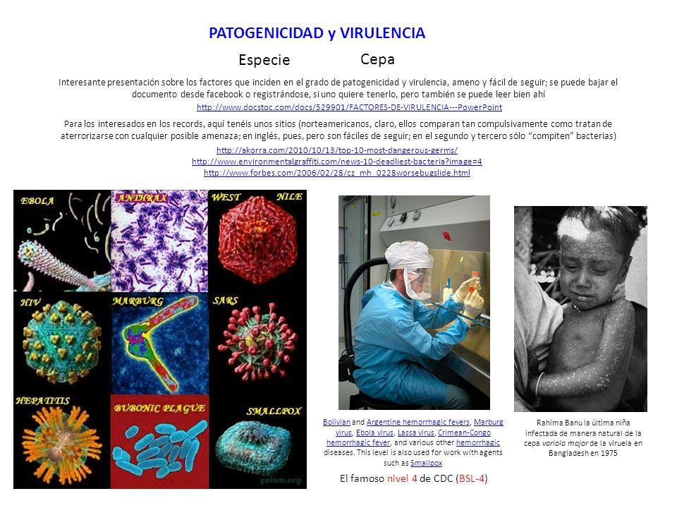 http://en.wikipedia.org/ wiki/File:Influenza_virus _research.jpg http://www.docstoc.com/docs/529901/FACTORES-DE-VIRULENCIA---PowerPoint PATOGENICIDAD