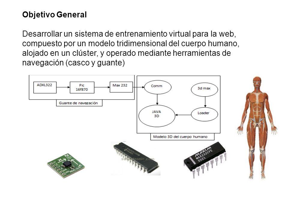 Objetivo General Desarrollar un sistema de entrenamiento virtual para la web, compuesto por un modelo tridimensional del cuerpo humano, alojado en un