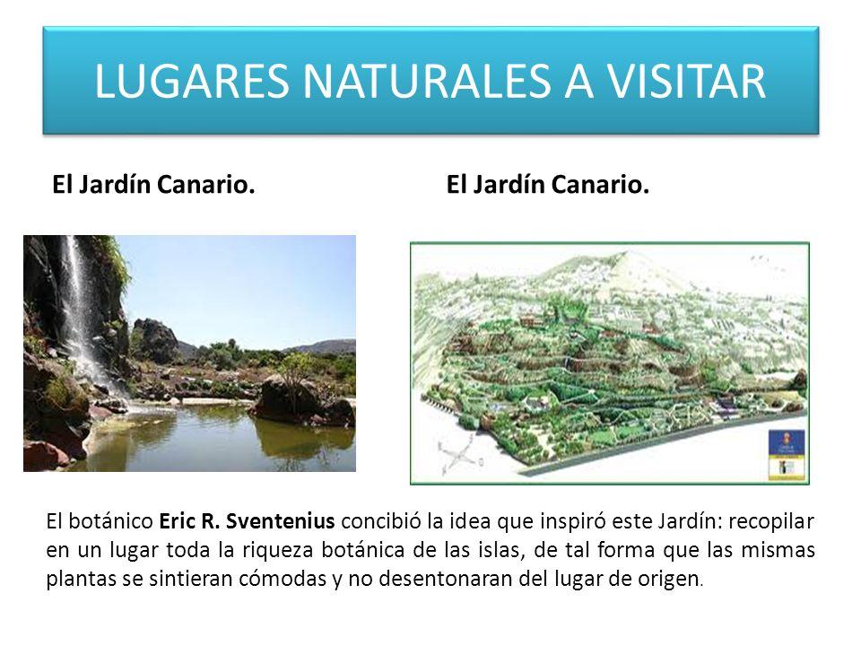 LUGARES NATURALES A VISITAR El Jardín Canario.El botánico Eric R.