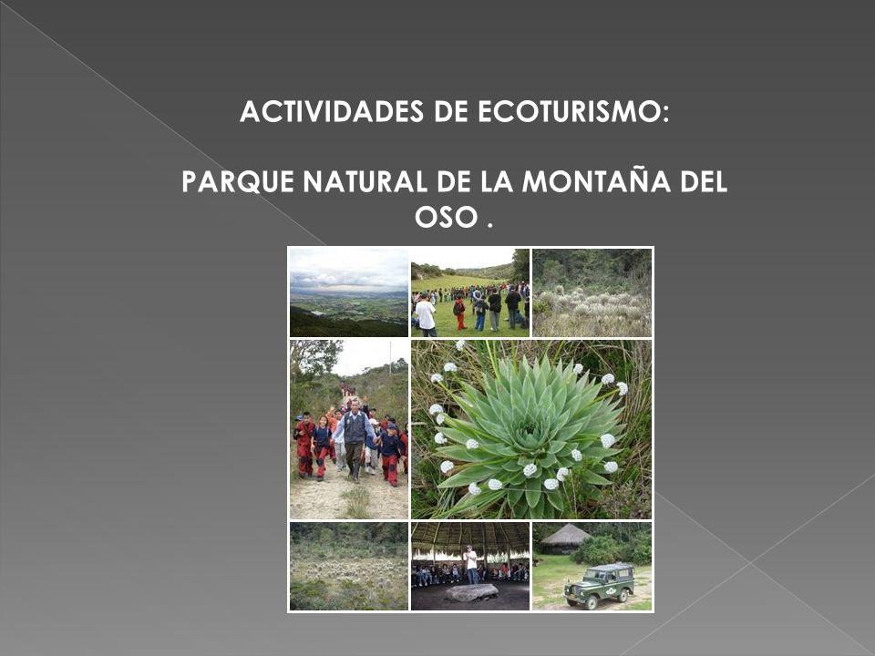 ACTIVIDADES DE ECOTURISMO: PARQUE NATURAL DE LA MONTAÑA DEL OSO.