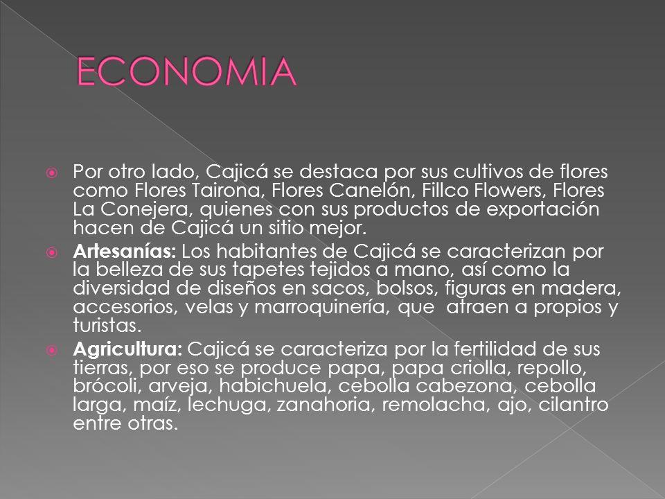 Por otro lado, Cajicá se destaca por sus cultivos de flores como Flores Tairona, Flores Canelón, Fillco Flowers, Flores La Conejera, quienes con sus productos de exportación hacen de Cajicá un sitio mejor.