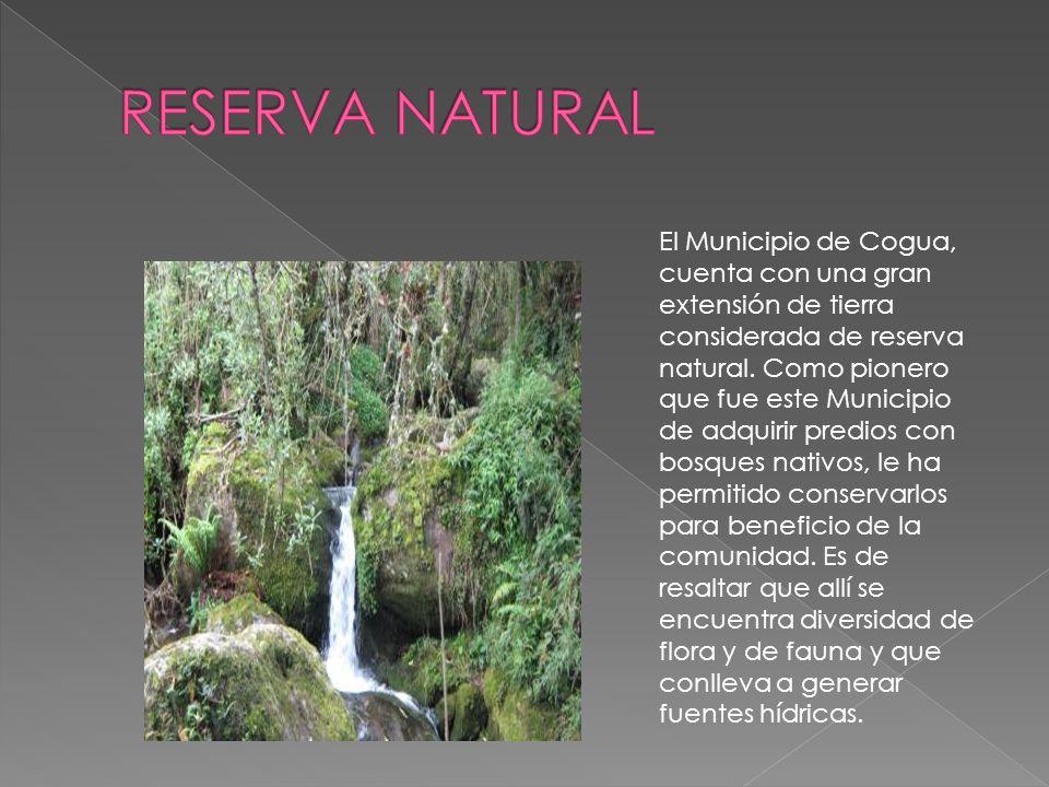 El Municipio de Cogua, cuenta con una gran extensión de tierra considerada de reserva natural.