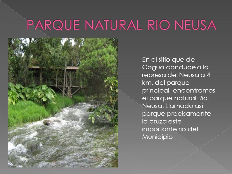 En el sitio que de Cogua conduce a la represa del Neusa a 4 km.