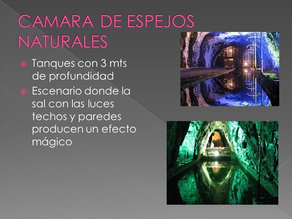 Tanques con 3 mts de profundidad Escenario donde la sal con las luces techos y paredes producen un efecto mágico