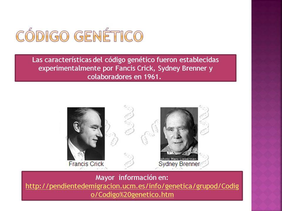 Las características del código genético fueron establecidas experimentalmente por Fancis Crick, Sydney Brenner y colaboradores en 1961. Mayor informac