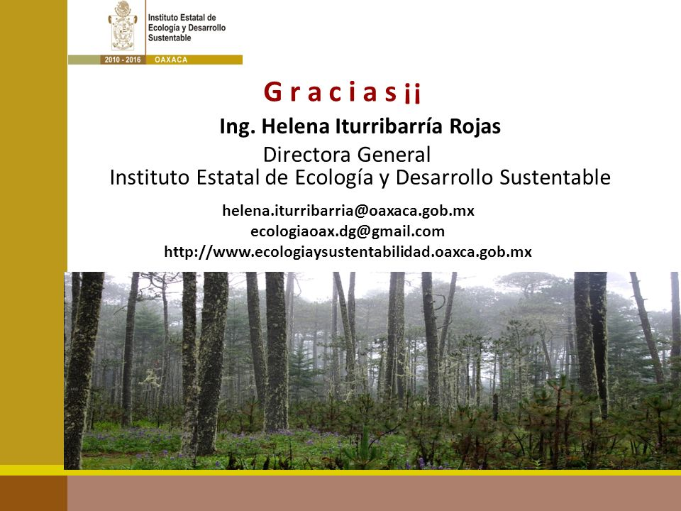 G r a c i a s ¡¡ helena.iturribarria@oaxaca.gob.mx ecologiaoax.dg@gmail.com http://www.ecologiaysustentabilidad.oaxca.gob.mx Ing. Helena Iturribarría