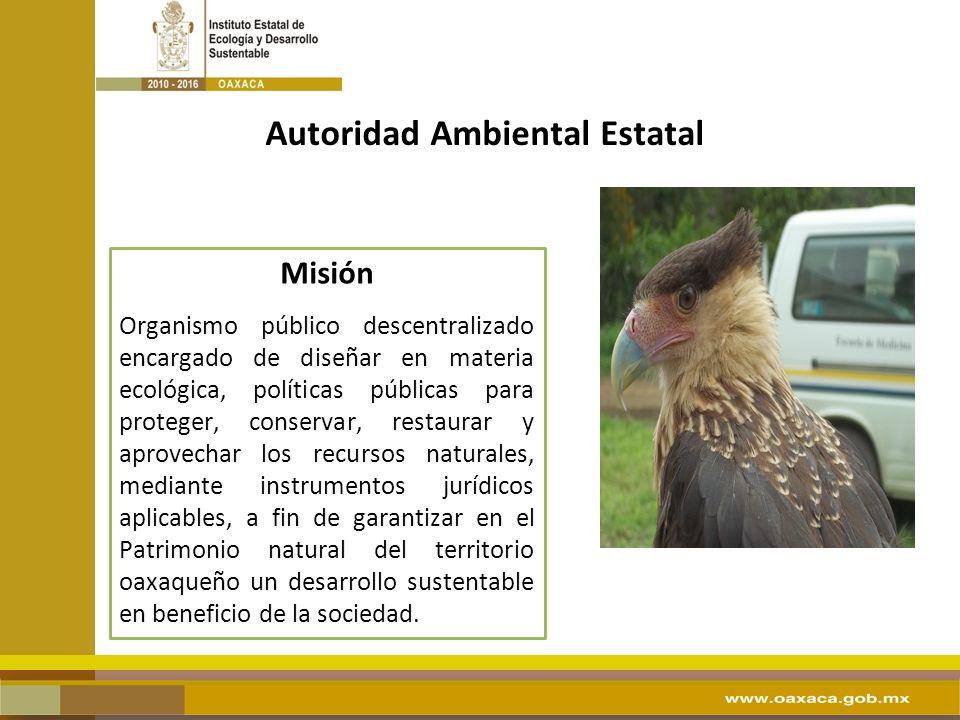 Autoridad Ambiental Estatal Misión Organismo público descentralizado encargado de diseñar en materia ecológica, políticas públicas para proteger, cons