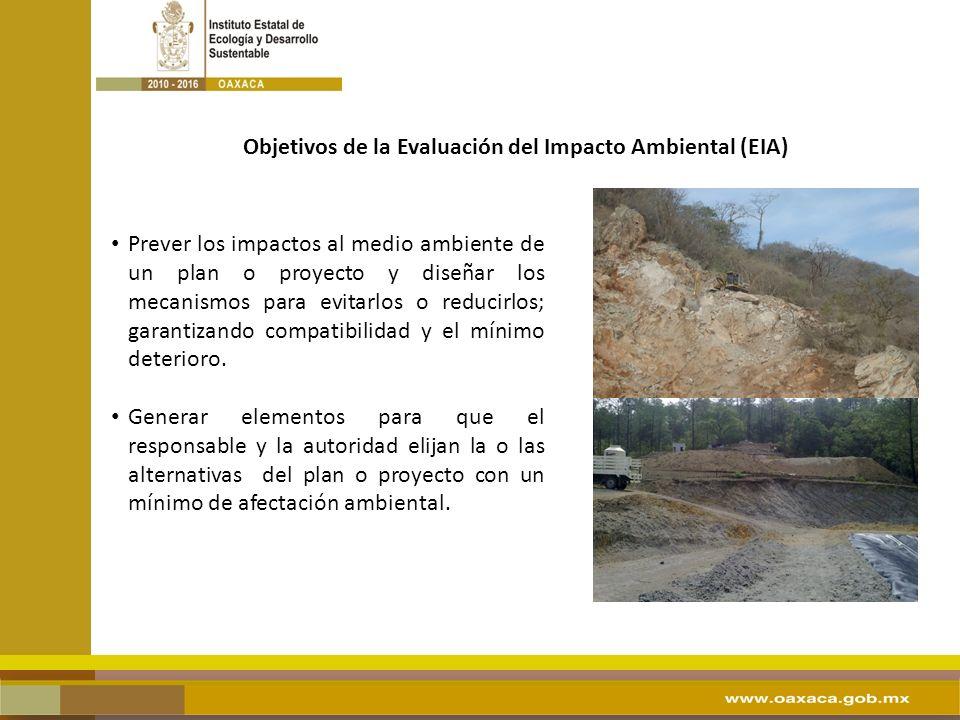 APARTADOS DE LA EVALUACIÓN DE IMPACTO AMBIENTAL DATOS GENERALES 1.1 Datos del promovente I.2.