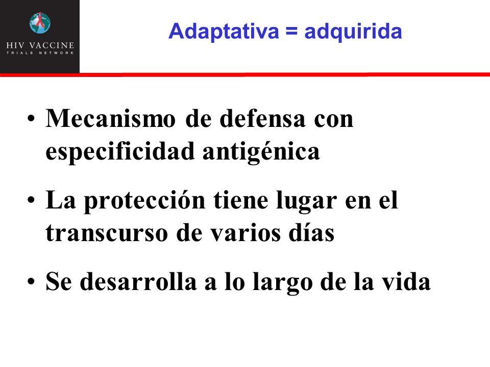 Adaptativa = adquirida Mecanismo de defensa con especificidad antigénica La protección tiene lugar en el transcurso de varios días Se desarrolla a lo