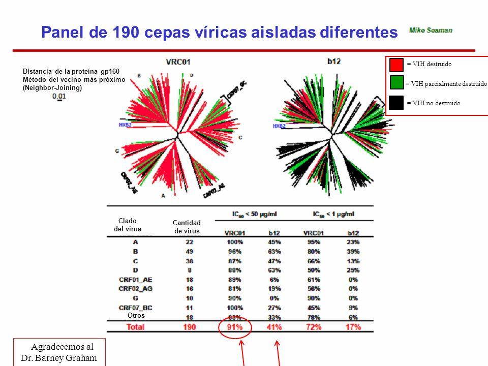 Panel de 190 cepas víricas aisladas diferentes Agradecemos al Dr. Barney Graham = VIH destruido = VIH parcialmente destruido = VIH no destruido Distan