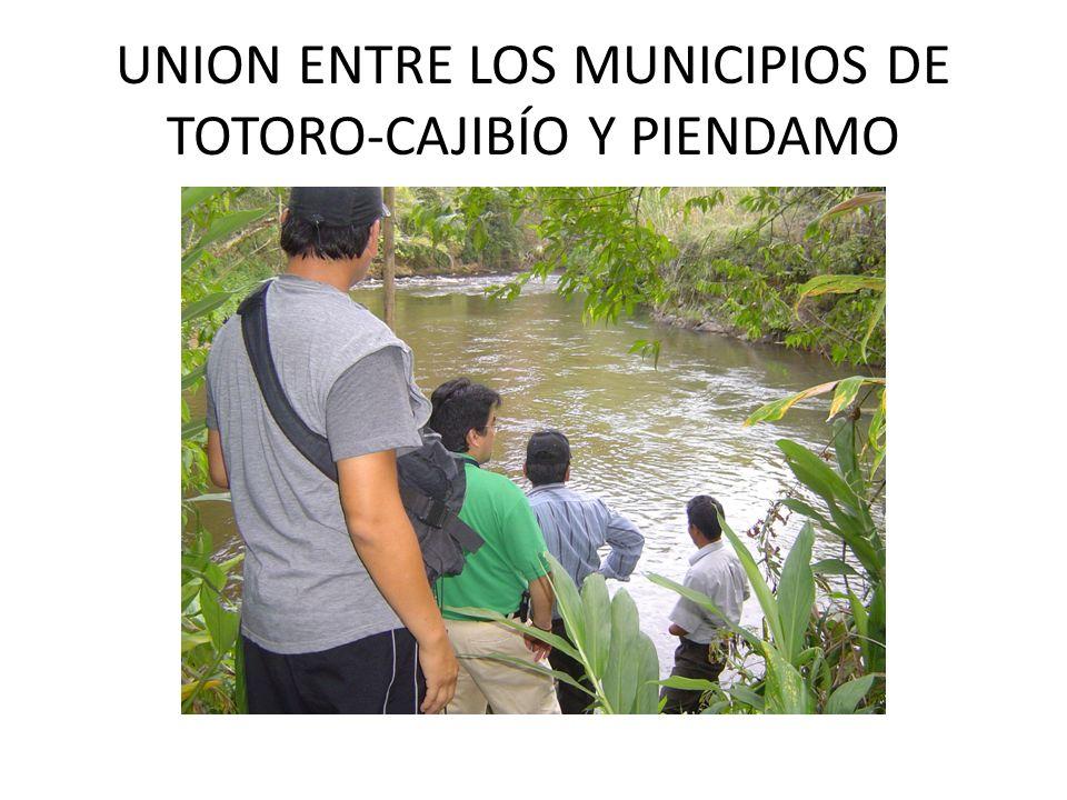 UNION ENTRE LOS MUNICIPIOS DE TOTORO-CAJIBÍO Y PIENDAMO