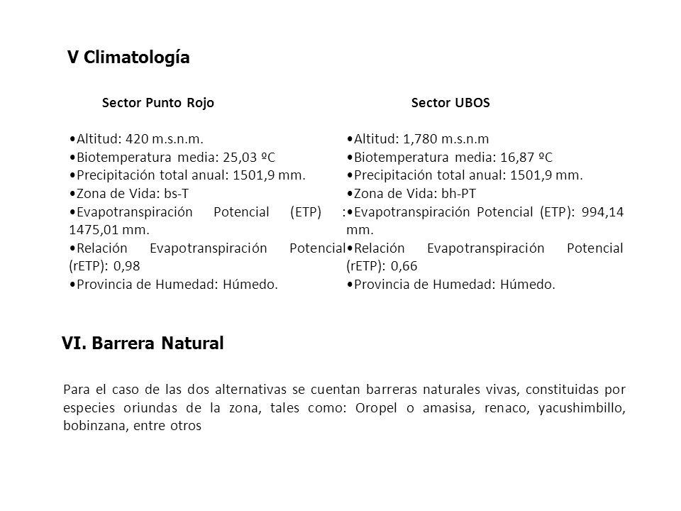 V Climatología Sector Punto Rojo Altitud: 420 m.s.n.m. Biotemperatura media: 25,03 ºC Precipitación total anual: 1501,9 mm. Zona de Vida: bs-T Evapotr