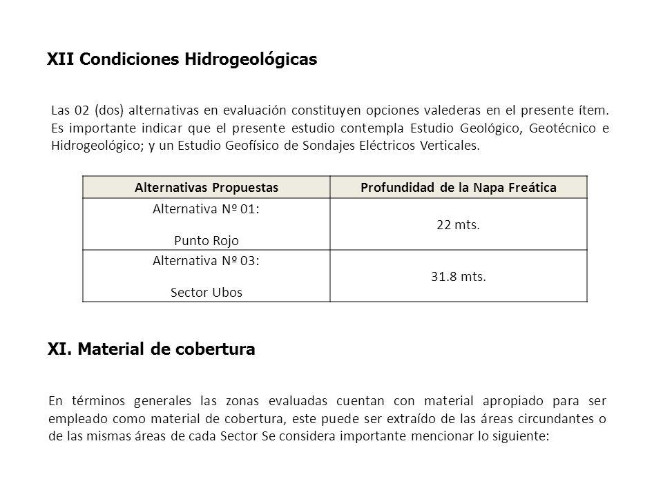 XI. Material de cobertura Las 02 (dos) alternativas en evaluación constituyen opciones valederas en el presente ítem. Es importante indicar que el pre