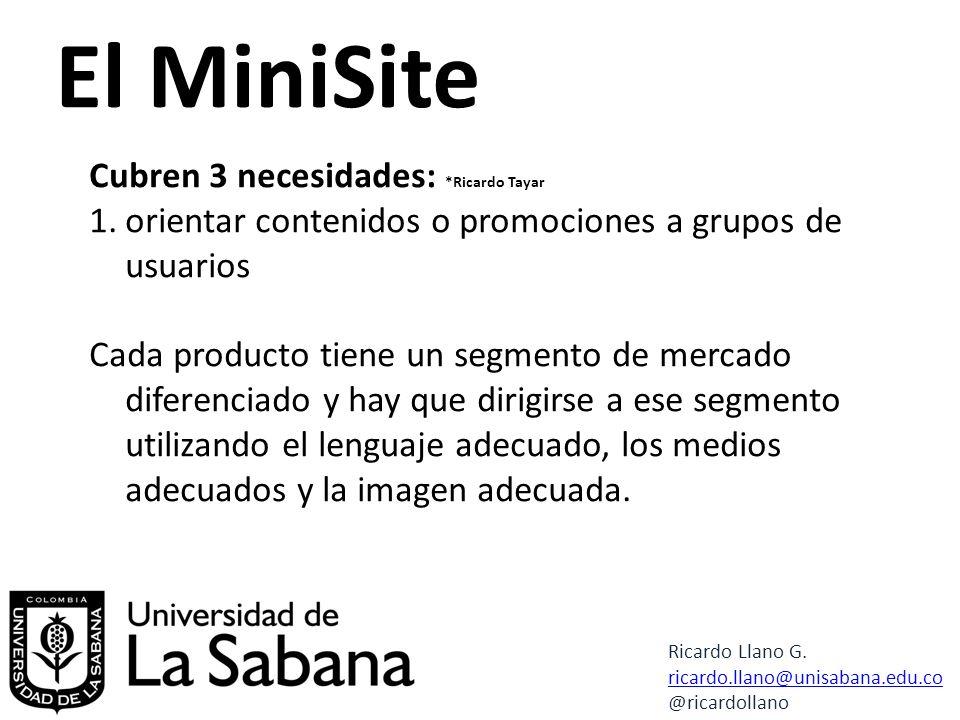 El MiniSite Cubren 3 necesidades: *Ricardo Tayar 1.orientar contenidos o promociones a grupos de usuarios Cada producto tiene un segmento de mercado diferenciado y hay que dirigirse a ese segmento utilizando el lenguaje adecuado, los medios adecuados y la imagen adecuada.