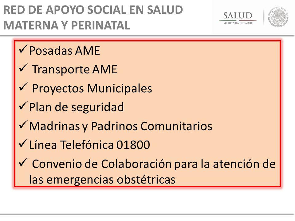 RED DE APOYO SOCIAL EN SALUD MATERNA Y PERINATAL Posadas AME Transporte AME Proyectos Municipales Plan de seguridad Madrinas y Padrinos Comunitarios L