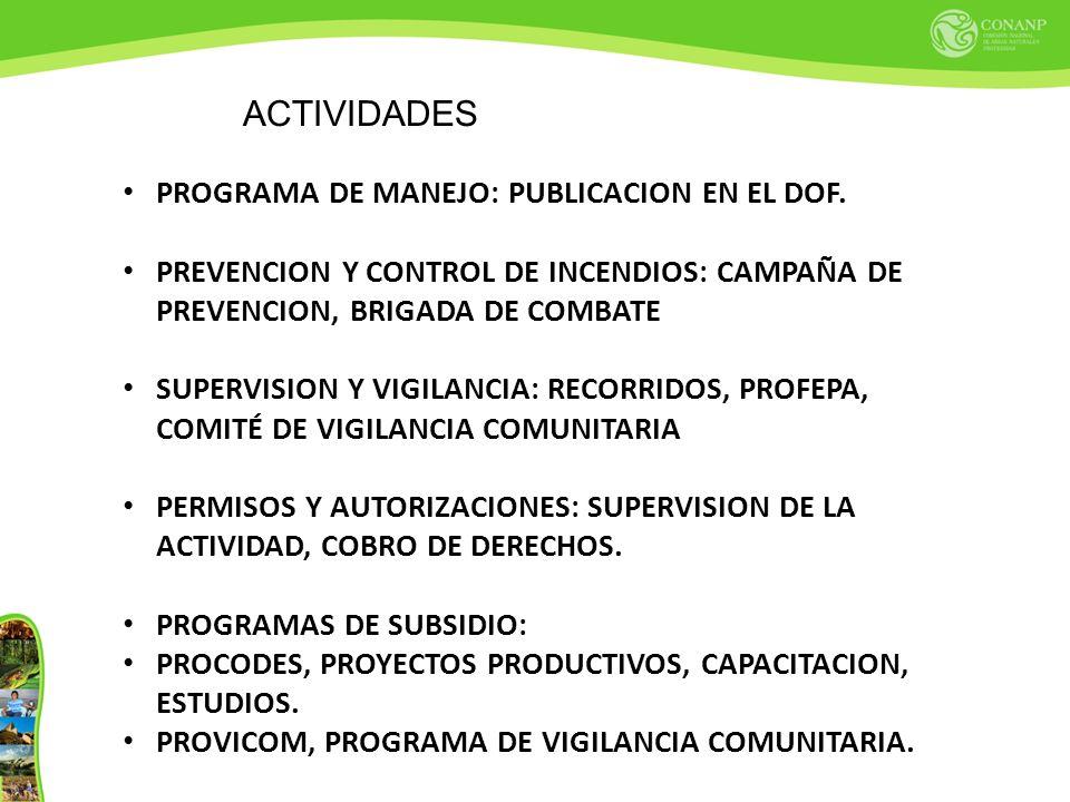 ACTIVIDADES PROGRAMA DE MANEJO: PUBLICACION EN EL DOF. PREVENCION Y CONTROL DE INCENDIOS: CAMPAÑA DE PREVENCION, BRIGADA DE COMBATE SUPERVISION Y VIGI