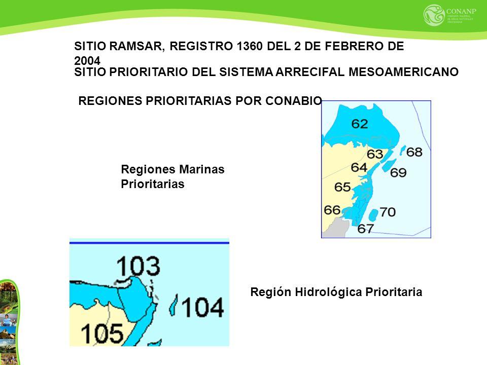 Regiones Marinas Prioritarias Región Hidrológica Prioritaria SITIO RAMSAR, REGISTRO 1360 DEL 2 DE FEBRERO DE 2004 SITIO PRIORITARIO DEL SISTEMA ARRECIFAL MESOAMERICANO REGIONES PRIORITARIAS POR CONABIO