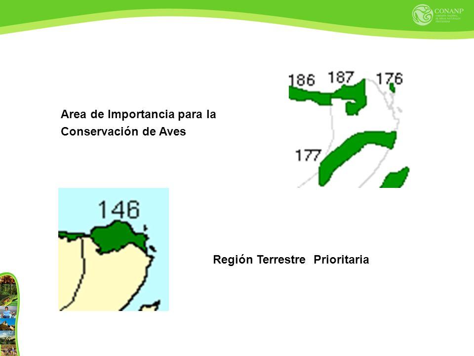 Area de Importancia para la Conservación de Aves Región Terrestre Prioritaria