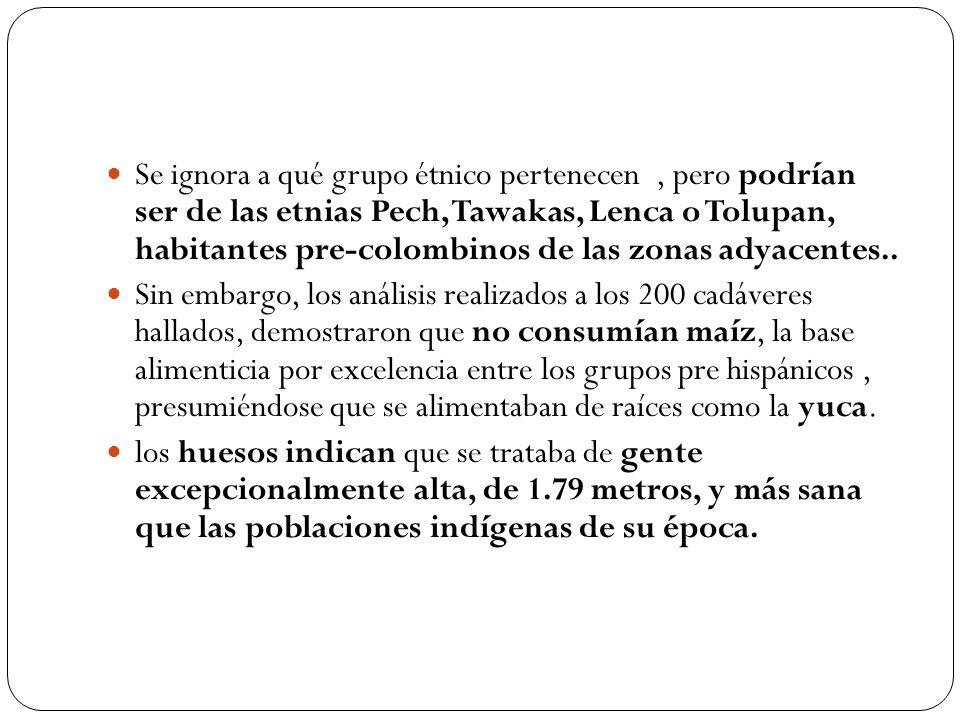 Se ignora a qué grupo étnico pertenecen, pero podrían ser de las etnias Pech, Tawakas, Lenca o Tolupan, habitantes pre-colombinos de las zonas adyacen