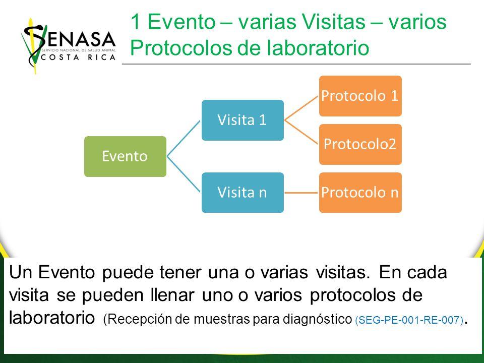 1 Evento – varias Visitas – varios Protocolos de laboratorio EventoVisita 1Protocolo 1Protocolo2Visita nProtocolo n Un Evento puede tener una o varias visitas.