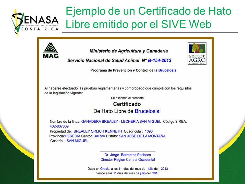 Ejemplo de un Certificado de Hato Libre emitido por el SIVE Web