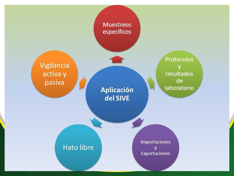 Aplicación del SIVE Muestreos específicos Protocolos y resultados de laboratorio Importaciones y Exportaciones Hato libre Vigilancia activa y pasiva