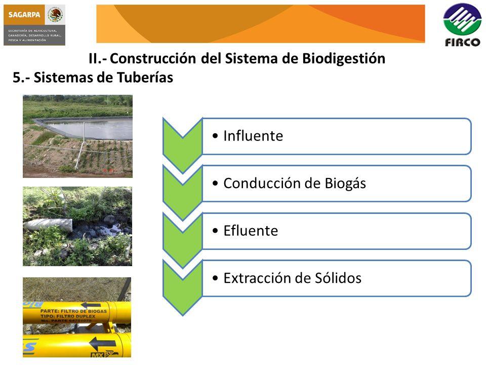 II.- Construcción del Sistema de Biodigestión 5.- Sistemas de Tuberías InfluenteConducción de BiogásEfluenteExtracción de Sólidos