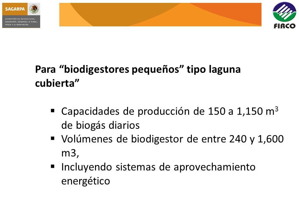 Para biodigestores pequeños tipo laguna cubierta Capacidades de producción de 150 a 1,150 m 3 de biogás diarios Volúmenes de biodigestor de entre 240