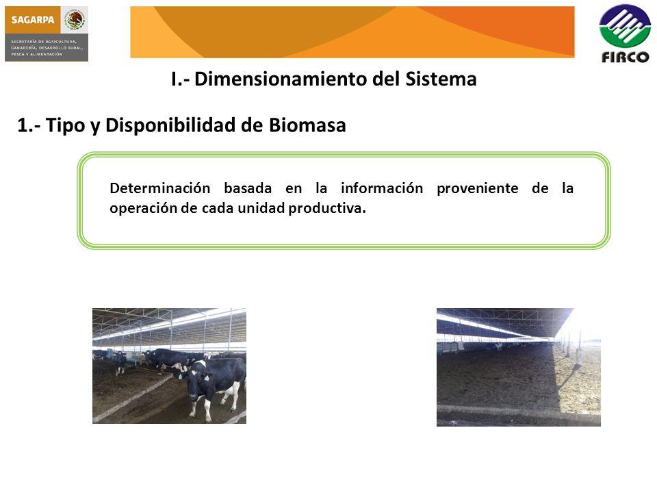 I.- Dimensionamiento del Sistema 1.- Tipo y Disponibilidad de Biomasa Determinación basada en la información proveniente de la operación de cada unida