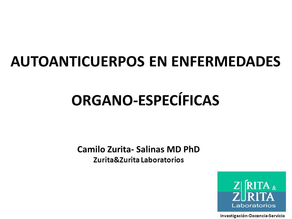 AUTOANTICUERPOS EN ENFERMEDADES ORGANO-ESPECÍFICAS Camilo Zurita- Salinas MD PhD Zurita&Zurita Laboratorios Investigación-Docencia-Servicio