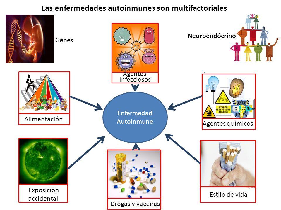 Las enfermedades autoinmunes son multifactoriales Enfermedad Autoinmune Alimentación Agentes químicos Exposición accidental Estilo de vida Drogas y va