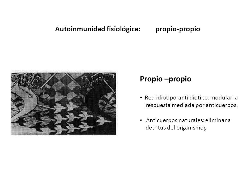 Autoinmunidad fisiológica:propio-propio Propio –propio Red idiotipo-antiidiotipo: modular la respuesta mediada por anticuerpos. Anticuerpos naturales: