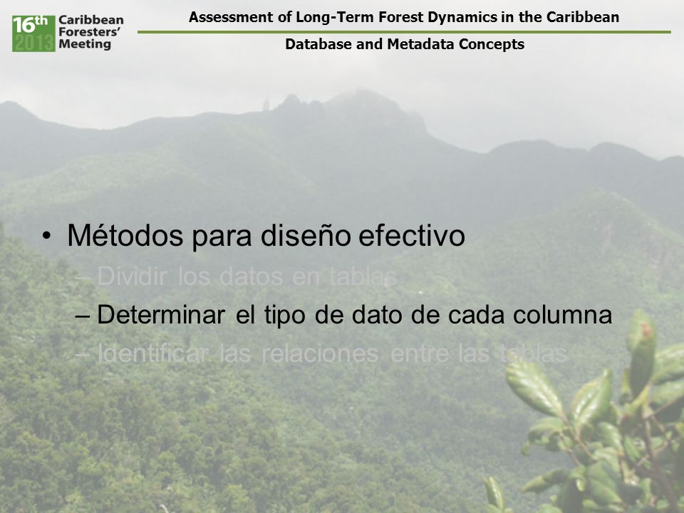 Assessment of Long-Term Forest Dynamics in the Caribbean Database and Metadata Concepts Métodos para diseño efectivo –Dividir los datos en tablas –Det