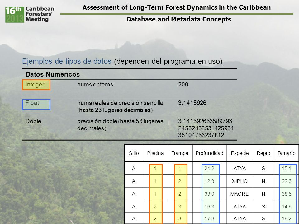 Assessment of Long-Term Forest Dynamics in the Caribbean Database and Metadata Concepts SitioPiscinaTrampaProfundidadEspecieReproTamaño A1124.2ATYAS15.1 A1212.3XIPHON22.3 A1233.0MACREN38.5 A2316.3ATYAS14.6 A2317.8ATYAS19.2 Datos Numéricos Integernums enteros200 Floatnums reales de precisión sencilla (hasta 23 lugares decimales) 3.1415926 Dobleprecisión doble (hasta 53 lugares decimales) 3.141592653589793 24532438531425934 35104756237812 Ejemplos de tipos de datos (dependen del programa en uso)